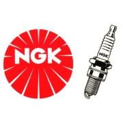 logo-ngk_1_1